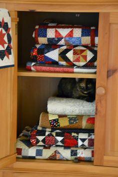 ❤ =^..^= ❤    Michelle's Quilts & Stuff: Feline Friday--Chloe