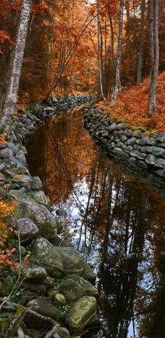 Beautiful fall trees, rock edged stream (1) From: Inspirational Lane, please visit