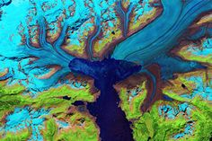 Retreat of the Columbia Glacier : Image of the Day : NASA Earth Observatory 10/31/2014