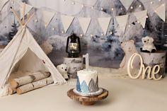 Polar Bear Cake Smash First Birthday theme photography set up Smash Cake First Birthday, Boys First Birthday Party Ideas, Baby Cake Smash, Baby Boy First Birthday, Baby Birthday Cakes, Baby Boy Cakes, 1st Boy Birthday, Boy Birthday Parties, First Birthday Photography