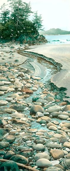 "WATERCOLOR with amazing realism by Carol Evans. ""Seabound Stream""  ""Cold, clear stream water bursts out from the shade of the forest into broad daylight on the beach...."