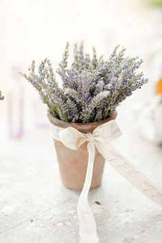 start growing lavendar in little pots a few months before your wedding and give them as wedding favors.