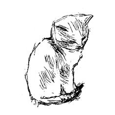 Hand drawing of Cat coloring page ❤ liked on Polyvore featuring fillers, drawings, animals, cats, doodles, backgrounds, text, quotes, phrase and borders