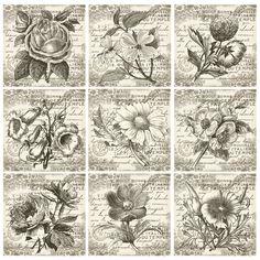 Printable Scrapbook Paper, Scrapbook Cards, Vintage Labels, Vintage Ephemera, Doodles, Vintage Crafts, Aesthetic Stickers, Art Journal Inspiration, Vintage Flowers