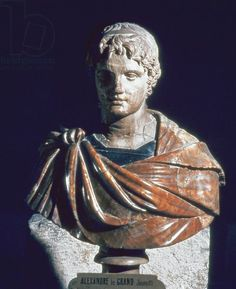Alexander the Great (356-323 BC), copy of a Greek original (marble) Ancient art and architecture Collection LLC / Art Library Bridgeman - ancient Greek kingdom of Macedonia