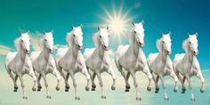Lucky Seven White Running Horses Vastu Wall Painting. Painting Painting and Painting Weight is 400 GM. Tier Wallpaper, Horse Wallpaper, Wallpaper Gallery, Painting Wallpaper, Animal Wallpaper, Wallpaper Pictures, Apple Wallpaper, Wallpaper Backgrounds, Seven Horses Painting