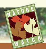 Nature-Watch ...everything you need to teach children about Nature. Great website..lots of resources