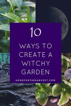 Ready to create a witch garden for your very own? Ooooh is it ever time to cultivate some plant magick! Let's get started on exactly how to go about nurturing sanctuary among the trees, flowers, and herbs that support our life on this Earth. Permaculture, Witchy Garden, Gothic Garden, Victorian Gothic Decor, Garden Spells, Hippie Garden, Landscape Arquitecture, Potager Bio, Witch Herbs
