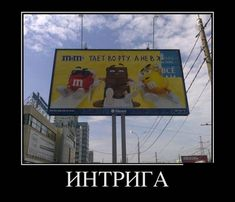 Dankest Memes, Funny Memes, Jokes, Russia Pictures, Russian Humor, Mood Pics, Haha, Laughter, Funny Pictures
