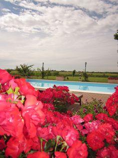 La grande piscina contornata di fiori