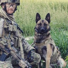 Australian SASR Cpl Mark Donaldson VC together with Multi-Purpose Canine Devil () who saved his life on many occasions. Military Working Dogs, Military Dogs, Police Dogs, Military Service, German Shepherd Puppies, German Shepherds, War Dogs, Belgian Malinois, Dog Agility