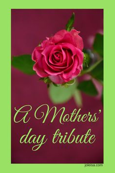For the Special Mothers in my life