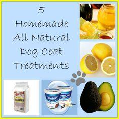 5 Homemade Dog Coat Treatments Homemade Dog Treats, Pet Treats, Dog Treat Recipes, Dog Food Recipes, Dog Smells, Cockerspaniel, Dog Coats, Pet Health, Dog Grooming