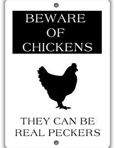 Beware of Chickens Indoor Outdoor Aluminum No Rust No by WildSigns