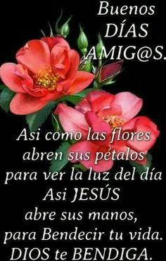 Pin by magdalena morales on buen dia Good Morning Dear Friend, Good Morning Funny, Good Morning Messages, Morning Prayers, Morning Wish, Good Morning Quotes, Spanish Inspirational Quotes, Spanish Quotes, Good Morning In Spanish