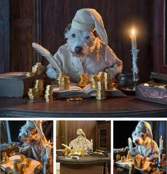 Man Dresses His Dogs Up as Other Animals for Christmas (8 pictures)