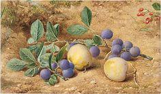 John William Hill (American (born England), 1812–1879). Plums, 1870. The Metropolitan Museum of Art, New York. Gift of J. Henry Hill, 1882 (82.9.1)