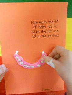 Feb. is Dental Health Month. How many teeth?