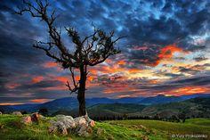 HDR sunset shot taken in Blue Mountains, Australia.  Photo by Yury Prokopenko. via Flickr  https://www.facebook.com/WorldwideCollection