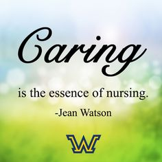 Jean Watson's Caring Theory Essay Sample