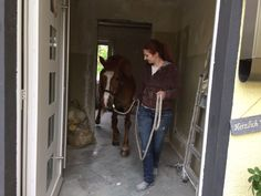 Pony im Haus, Haus Pferd
