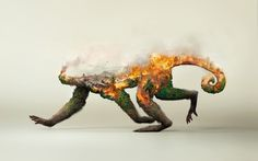 "查看此 @Behance 项目:""Destroying nature is destroying life""https://www.behance.net/gallery/34853303/Destroying-nature-is-destroying-life"