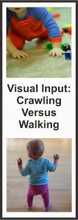 Your Therapy Source - www.YourTherapySource.com: Different Visual Input when Crawling Versus Walking
