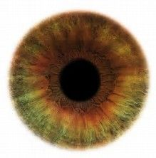 Image result for Rare Eye Colors in Humans Hazel