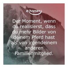 Just Me, Beautiful Horses, Equestrian, Random, Heart, Adorable Animals, Vibrant, Funny Horse Sayings, Equestrian Quotes