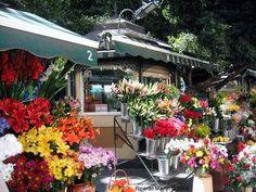 Puestos de Flores en Málaga