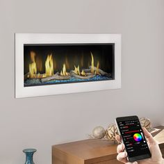 Napoleon LV38 Vector 38 Linear Direct Vent Gas Fireplace |  WoodlandDirect.com: Indoor Fireplaces