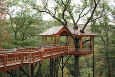 Pete Nelson tree house_2600_400