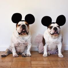 ❤️ @maverick_poser How about I'm your Mickey & you're my Minnie?