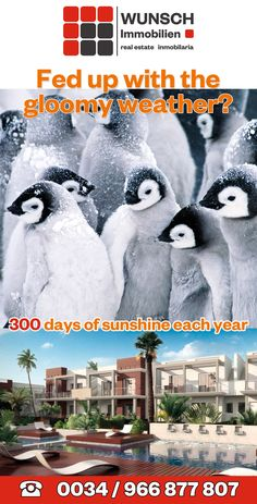 Costa, Sunshine, Spain, Real Estate, Movie Posters, Movies, Real Estates, Films, Sevilla Spain