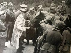The Führer feeds a Pferd in France 1940 - MädchenFürWolf