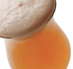 Blood Orange Wit - Brew Your Own