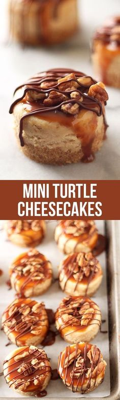 Mini Turtle Cheesecakes Recipe These lasted 2 MINUTES! Everyone loved them. Mini Turtle Cheesecakes feature a thick graham cracker crust, vanilla cheesecake filling, and are topped with caramel, toasted pecans, and chocolate! Mini Desserts, No Bake Desserts, Easy Desserts, Delicious Desserts, Dessert Recipes, Yummy Food, Dessert Ideas, Dessert Shots, Baking Desserts