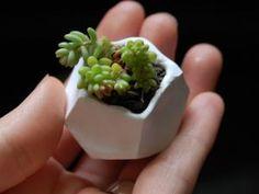 Fabriquer Un Pot De Fleur Miniature, DIY Tout Simple !