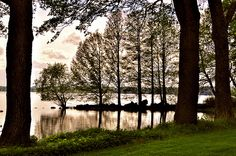 The trees and the water       www.stefansphotos.se #landscapes #sweden #photography #Water #lakes #Canal http://www.youtube.com/channel/UCJNAZ9OFsulr4ZATFJZjibQ