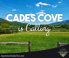 Cades Cove is calling! Are you answering?