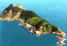 Snake Island, home of over 430,000 golden lanceheads, or 5 for every square meter