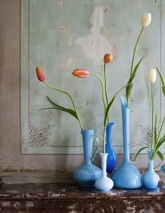 A collection of blue vases with orange tulips.  Love this.