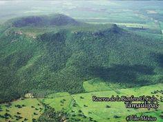 Reserva de la  Biosfera El Cielo, Tamaulipas