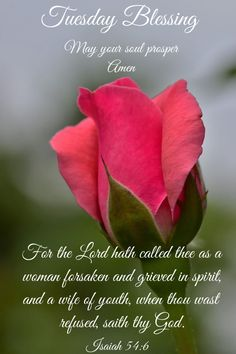 Bible Verses Quotes, Bible Scriptures, Isaiah 54, Biblical Womanhood, Blessed Quotes, Sisters In Christ, Fear Of The Lord, God Bless You, Have A Blessed Day