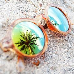 Sunnies & Palm trees! #splendidtropics