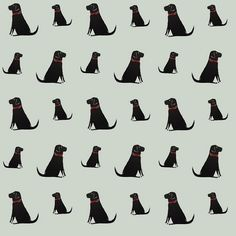 Black Labrador Wallpaper from www.sweetwilliamdesigns.com contact us for a small sample!