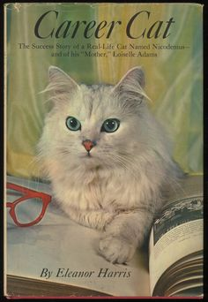 """""""Career cat. The success story of a real-life cat named Nicodemus and of his 'mother,' Loiselle Adams"""" by Eleanor Harris (1962) - Front cover. See what a difference literacy makes..."""