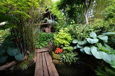 tropical landscape design