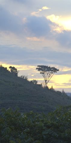 Sunset on the mountain, in the haze, Iringa District, Tanzania.  ©2009 Randy Haglund