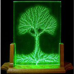 """The Tree of Life! Lichtenberg figures (Lichtenberg-Figuren, or """"Lichtenberg Dust Figures"""") are branching electric discharges tree-like or fern-like patterns that are created by high voltage discharges along the surface, or inside, electrical insulators."""